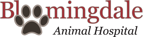 Bloomingdale Animal Hospital